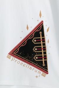 Procellarum_onepi03